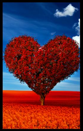 Liebestarot single kostenlos